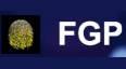 FGP空投总量20000个FGP